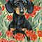 Dogs and Flowers for Easter - ART or PICTURE has to be in Group