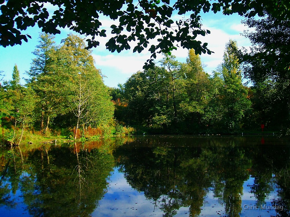 Lawns Woods Lake  by Chris  Munday