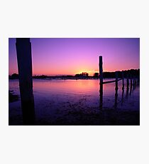 Forster Photographic Print