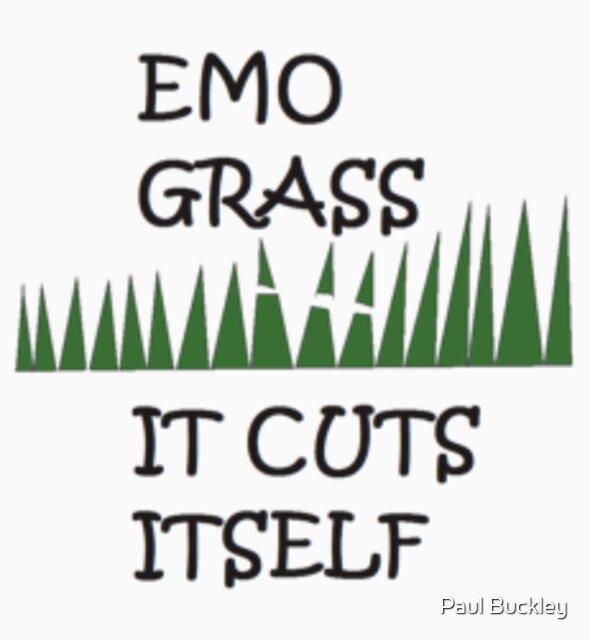 EMO GRASS 2 by Paul Buckley