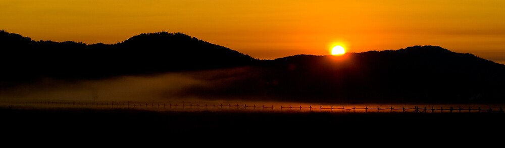 Morning Fog by Mike Needham