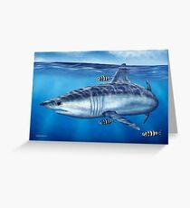 Searching - Mako Shark Greeting Card