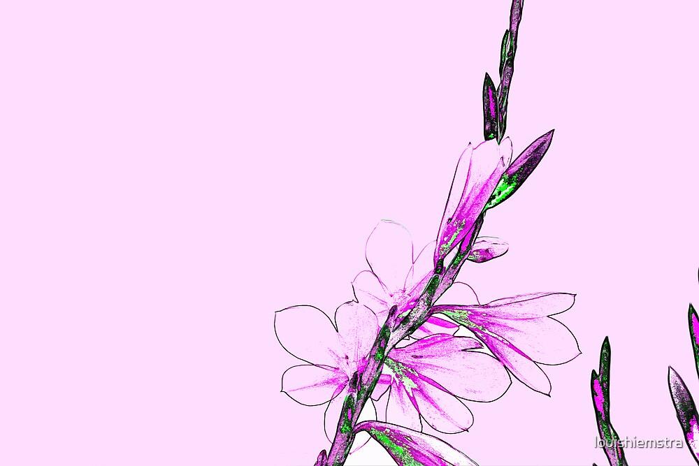 Pink by louishiemstra
