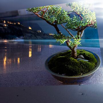 Bonsai Beach by louishiemstra