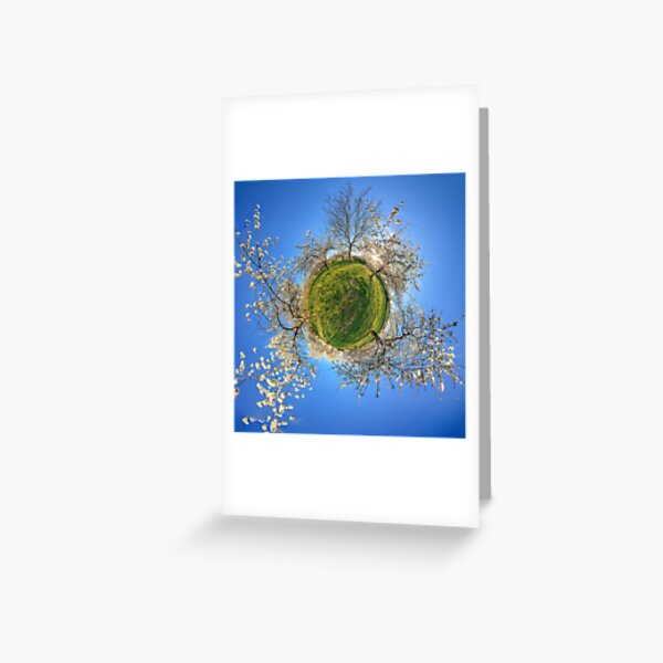Cherry orchard in the spring Greeting Card