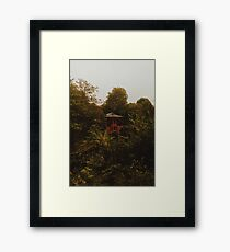 Feng Shang Princess Framed Print