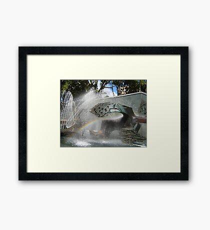 Newcastle (NSW) - Civic Fountain Rainbow Framed Print