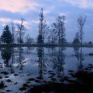 Just before Sunrise by ienemien