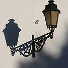 Street lamp 7976 by João Castro