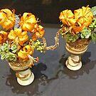 Golden Lilium Display by Graeme  Hyde
