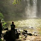 A sunlit moment at the Whangarei Falls........! by Roy  Massicks