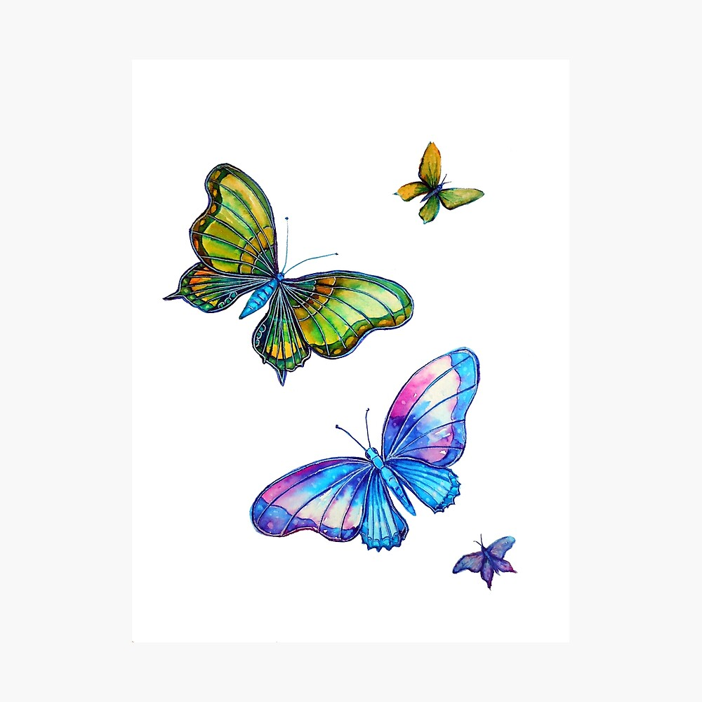 Butterflies - Follow the Leader Photographic Print