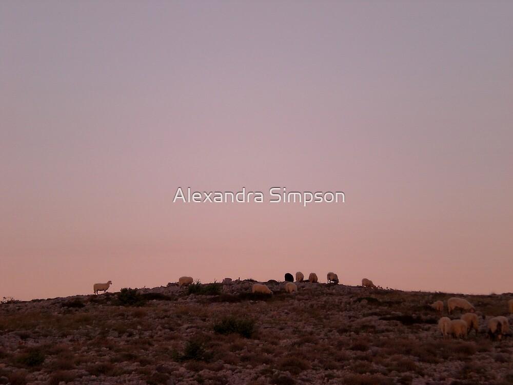 Mountain Sheep by Alex Simpson