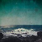 Emerald Ocean by Dirk Wuestenhagen