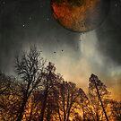When the Moon was young by Dirk Wuestenhagen