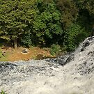 Over the top at the Whangarei Falls.......! by Roy  Massicks