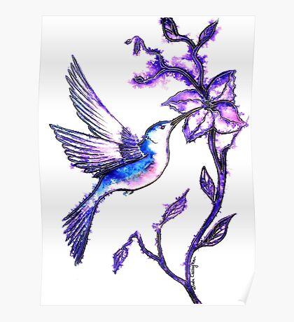 Shades of Purple - Humming Bird Poster