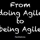 Agile sticker by Erwin Verweij