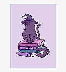 Feline Familiar Photographic Print