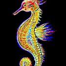 Neon Seahorse by Linda Callaghan