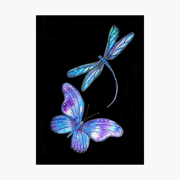 Dragonfly and Butterfly Wings Photographic Print