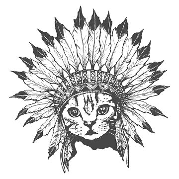 Indian Chief Cat de runcatrun