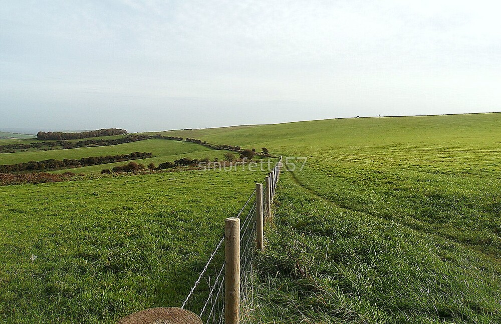 south east downs by smurfette57