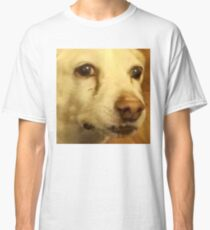 Daily Doge Concerned Doggo Classic T-Shirt