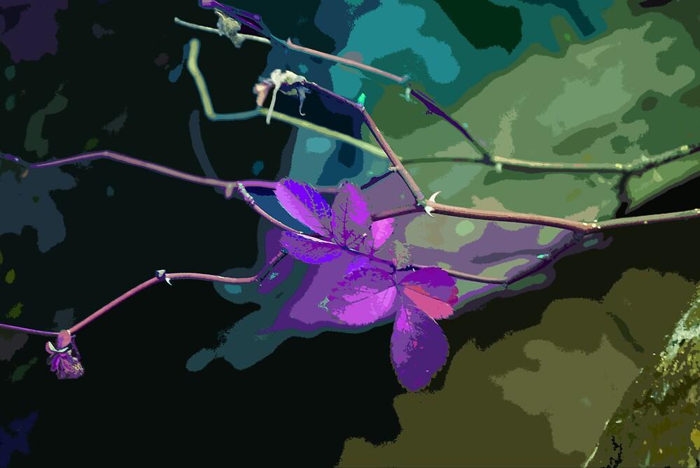 Thorns & purple by Rod  Adams