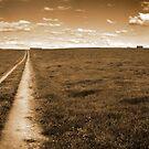 Lonely Road by identitymedia
