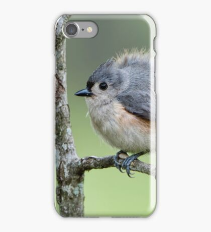 Round as a Ball and Fluffy as an Easter Chick iPhone Case/Skin