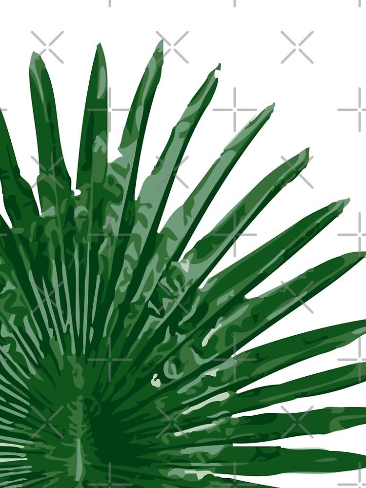 Fan Palm Leaf by MyArt23