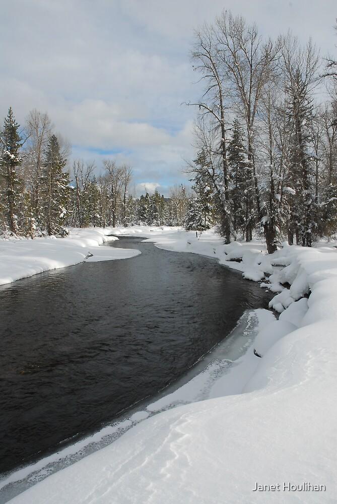 Lake Fork Creek Winter by Janet Houlihan