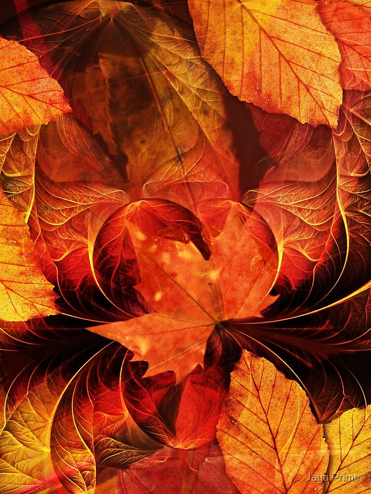 Apoptosis: The Fractal Geometry of Falling Leaves by jayaprime