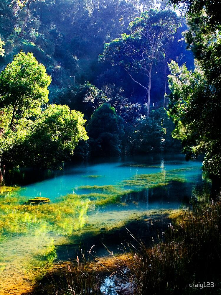Lost Lagoon by craig123