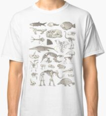 Paleontology Illustration Classic T-Shirt