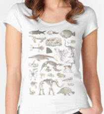 Paleontology Illustration Women's Fitted Scoop T-Shirt