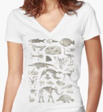 Paleontology Illustration Women's Fitted V-Neck T-Shirt