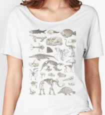 Paleontology Illustration Women's Relaxed Fit T-Shirt