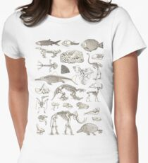 Paleontology Illustration Womens Fitted T-Shirt