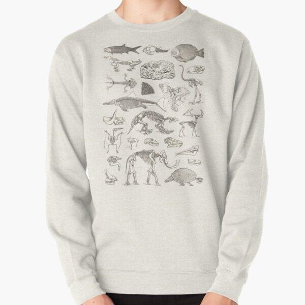 Paleontology Illustration Pullover Sweatshirt