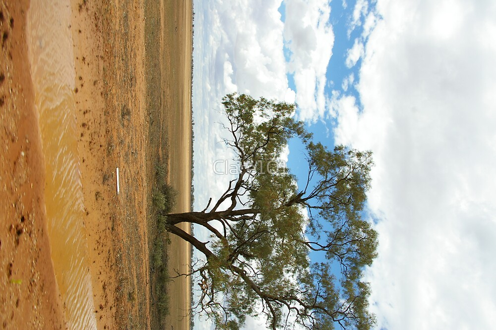 Desert Tree by Clare101