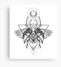 Occult Beetle II Canvas Print