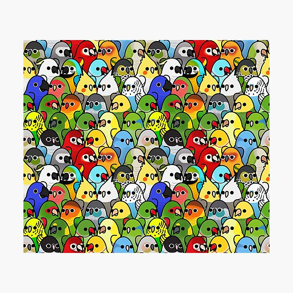 Too Many Birds! Bird Squad Classic Photographic Print