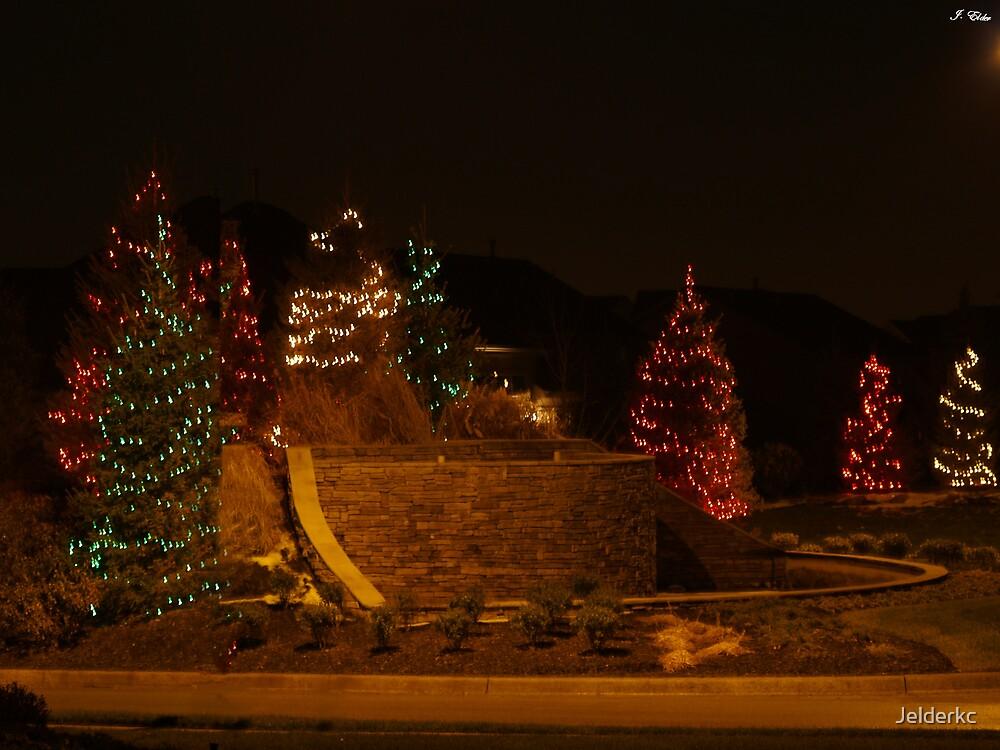 Holiday Night Shots  by Jelderkc