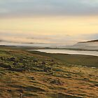 Morning view of Iceland by AHELENE