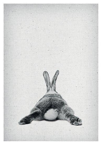 Rabbit 20 von froileinjuno