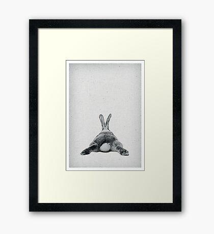 Rabbit 20 Framed Art Print