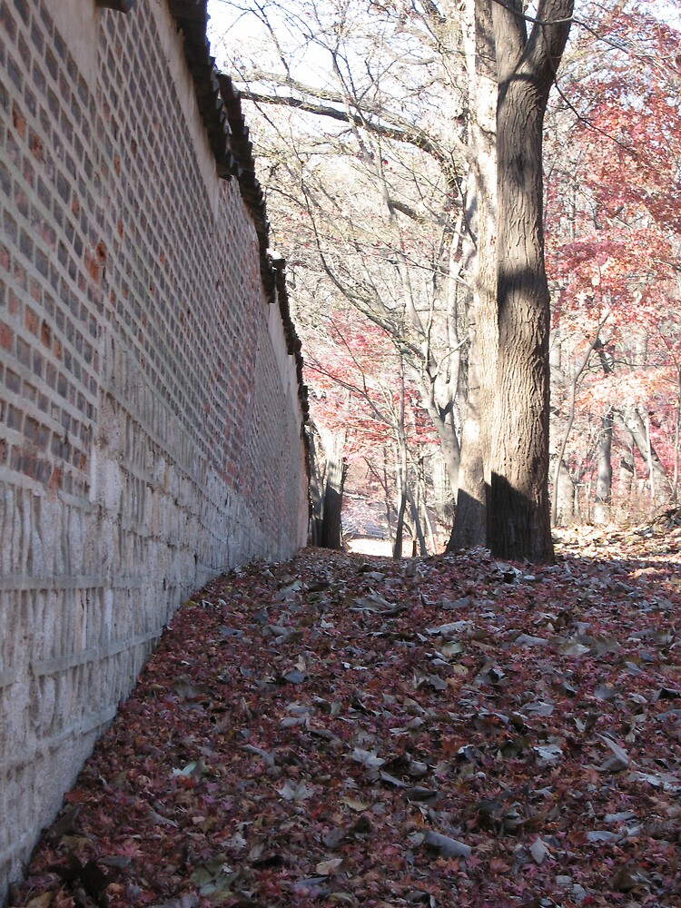 along the wall by rani