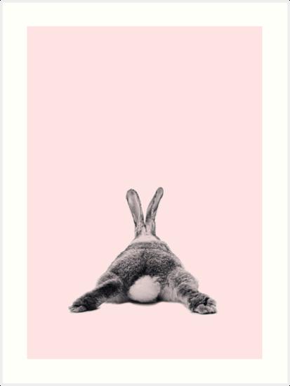 Rabbit 22 von froileinjuno